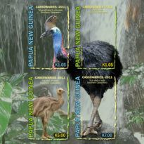 Cassowaries (World's Most Dangerous Bird)