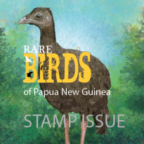 RARE BIRDS OF PAPUA NEW GUINEA